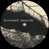 philippe-petit-rain-in-the-valley-ep-knotweed-records-cover