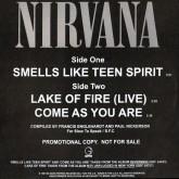 nirvana-smells-like-teen-spirit-slow-to-speak-cover