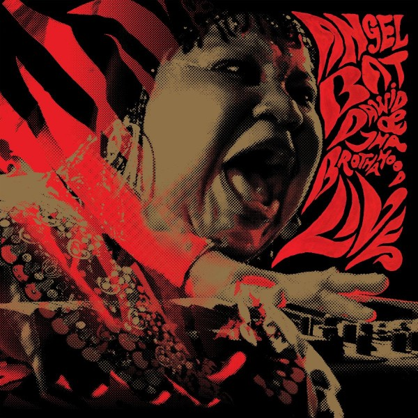angel-bat-david-tha-brothahood-angel-bat-david-tha-brothahood-live-in-berlin-lp-international-anthem-recording-co-cover
