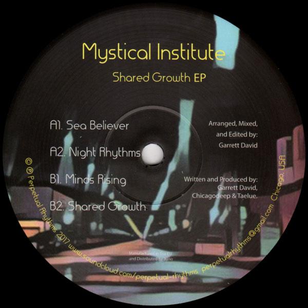 mystical-institute-garrett-david-shared-growth-ep-perpetual-rhythms-cover