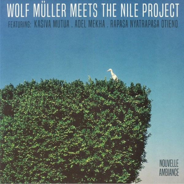 wolf-muller-meets-the-nile-project-wolf-mller-meets-the-nile-project-lp-nouvelle-ambiance-cover