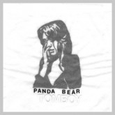 panda-bear-tomboy-limited-edition-4lp-box-set-paw-tracks-cover