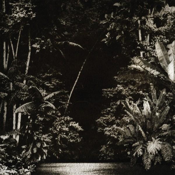 nicola-cruz-arpejos-da-floresta-highlife-cover