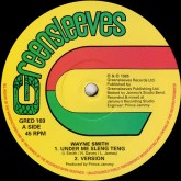 wayne-smith-michael-buckley-under-me-sleng-teng-dance-gate-greensleeves-records-cover