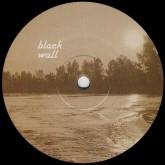 yuri-shulgin-beluga-alex-danilov-remix-black-wall-cover