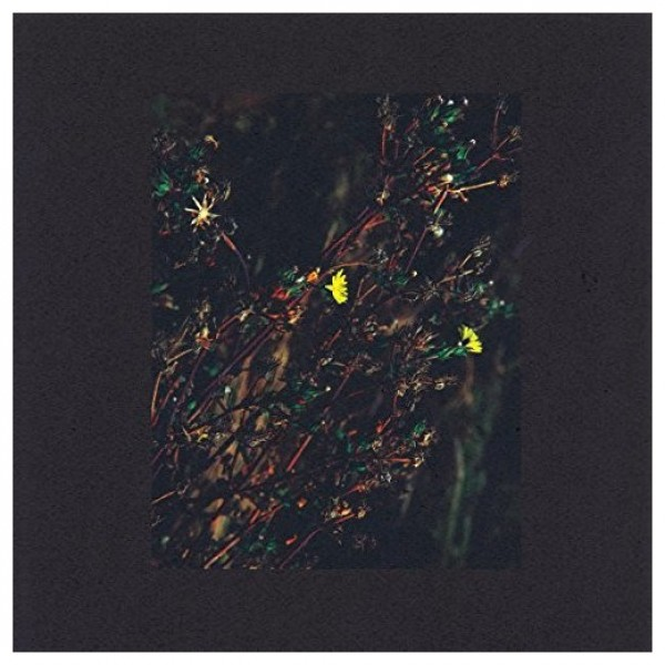 dark-sky-the-passenger-roman-flugel-remix-monkeytown-records-cover