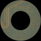 wayne-smith-e20-in-thing-dub-store-records-cover