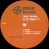 james-barnsley-in-the-woods-ep-daze-maxim-remix-vessel-records-cover