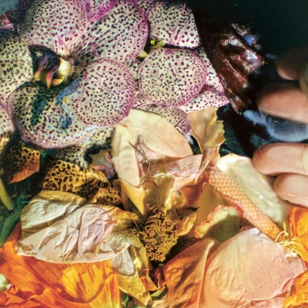 soela-genuine-silk-lp-dial-cover