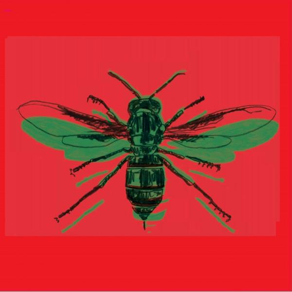 jacob-mafuleni-gary-gritness-batanidzo-nyami-nyami-records-cover