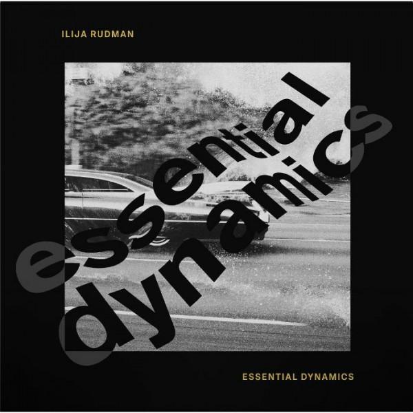 Essential Dynamics (Kai Alce / Ashley Beedle Remixes)