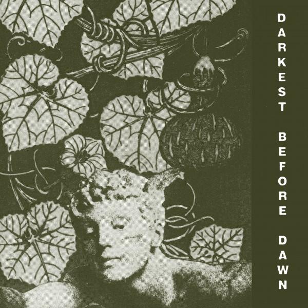 dark-day-darkest-before-dawn-lp-dark-entries-cover