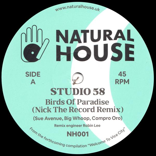 studio58-mandjou-kone-nick-the-record-remixes-natural-house-cover