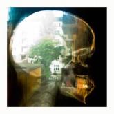 plaid-reachy-prints-cd-warp-cover