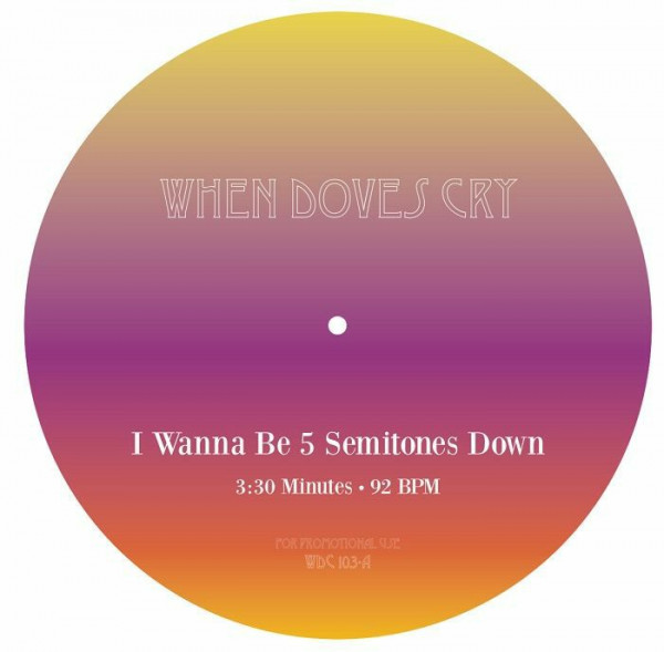 unknown-artist-i-wanna-be-5-semitones-down-when-doves-cry-cover