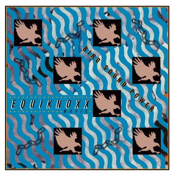 equiknoxx-bird-sound-power-lp-demdike-stare-cover
