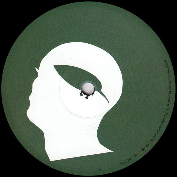 ted-amber-botanic-minds-sunset-series-4-lizz-barut-remixes-botanic-minds-cover