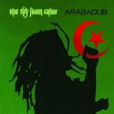 the-spy-from-cairo-arabadub-cd-wonderwheel-cover