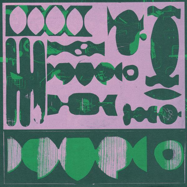 dj-sports-modern-species-lp-firecracker-recordings-cover