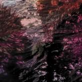 ricardo-tobar-treillis-lp-desire-records-cover