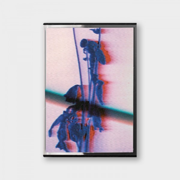 danielle-in-privacy-we-cope-cassette-5enses-cover