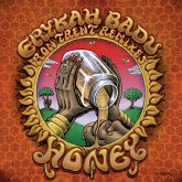 erykah badu baduizm full album free download