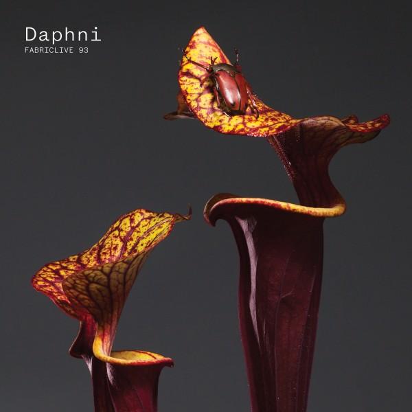daphni-fabric-live-93-cd-fabric-cover