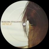 various-artists-bosconi-22-bosconi-stallions-apacz-bosconi-records-cover