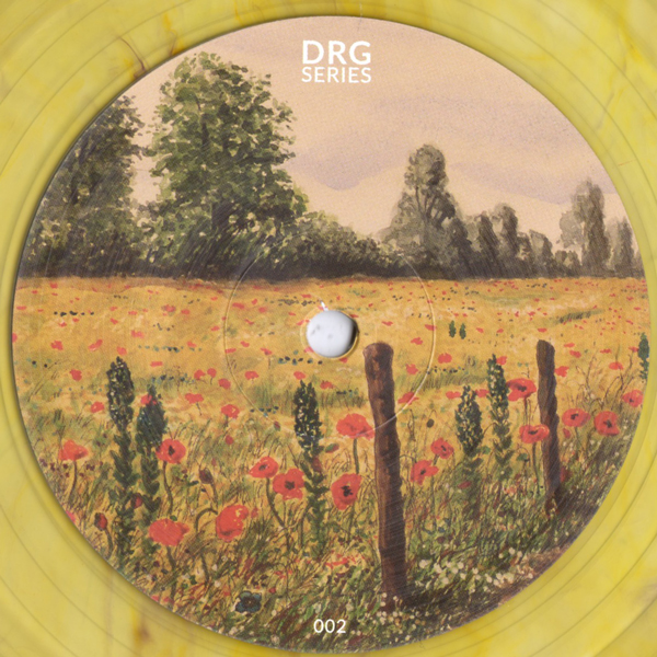 unknown-artist-drgs002-drg-series-cover
