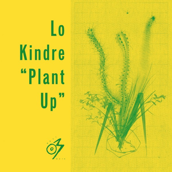 lo-kindre-plant-up-optimo-music-cover
