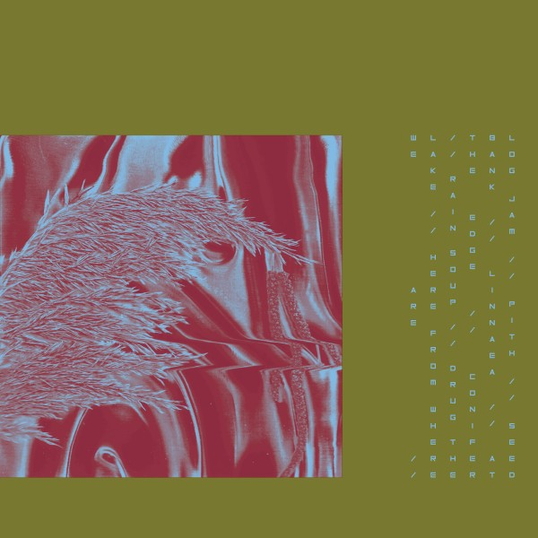 pariah-here-from-where-we-are-lp-houndstooth-cover