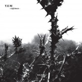 tew-eighteen-grass-ii-prepostpheo-electroniqueit-records-cover