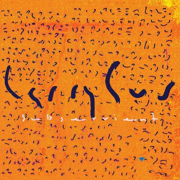 larry-gus-subservient-lp-dfa-records-cover