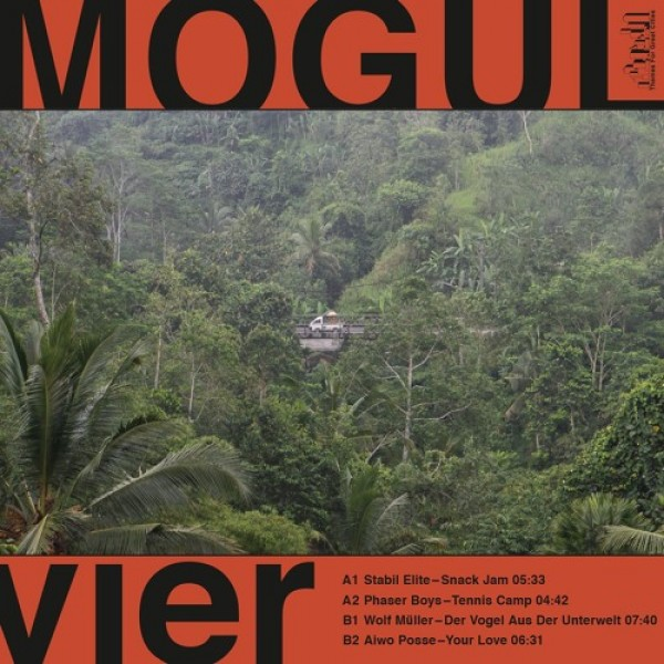 wolf-muller-phaser-boys-aiwo-posse-stabil-elite-mogul-vier-themes-for-great-cities-cover