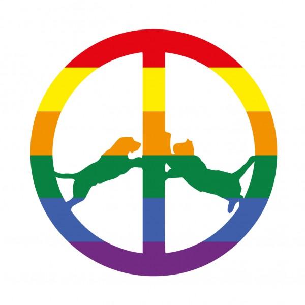 hype-williams-rainbow-edition-lp-big-dada-recordings-cover