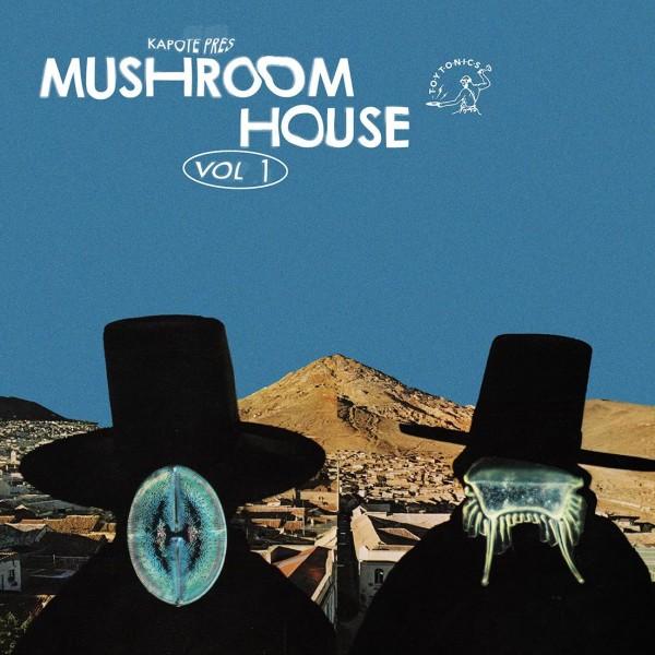 kapote-daniel-avery-daniele-baldelli-dj-koze-auntie-flo-various-artists-kapote-pres-mushroom-house-vol-1-lp-toy-tonics-cover