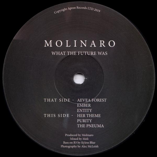 molinaro-what-the-future-was-ep-apron-cover