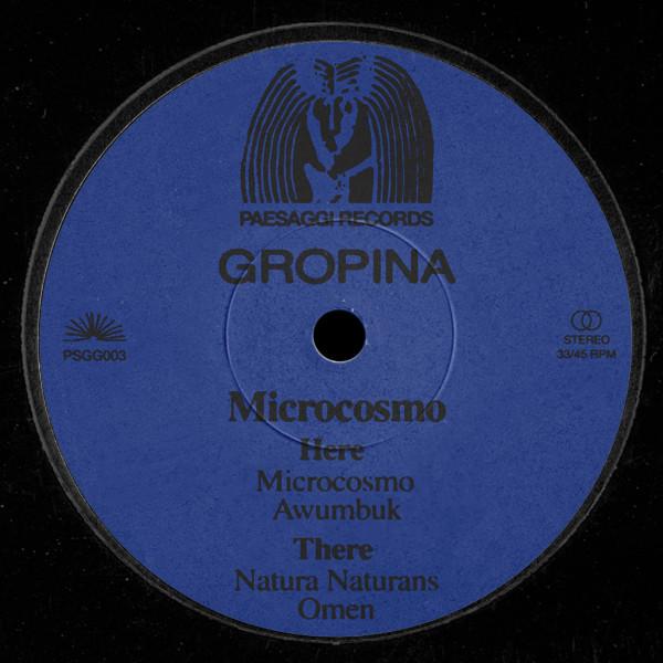 gropina-microcosmo-paesaggi-records-cover