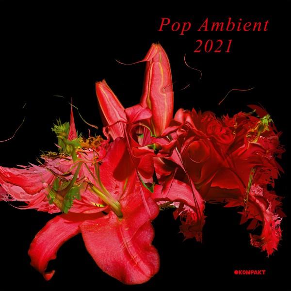 various-artists-pop-ambient-2021-lp-kompakt-cover