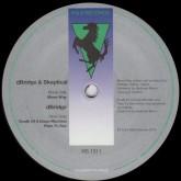 d-bridge-skeptical-move-way-r-s-records-cover