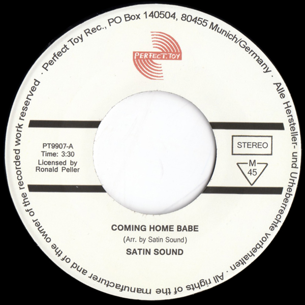 ronny-pellers-satin-sound-coming-home-baby-perfect-toy-cover