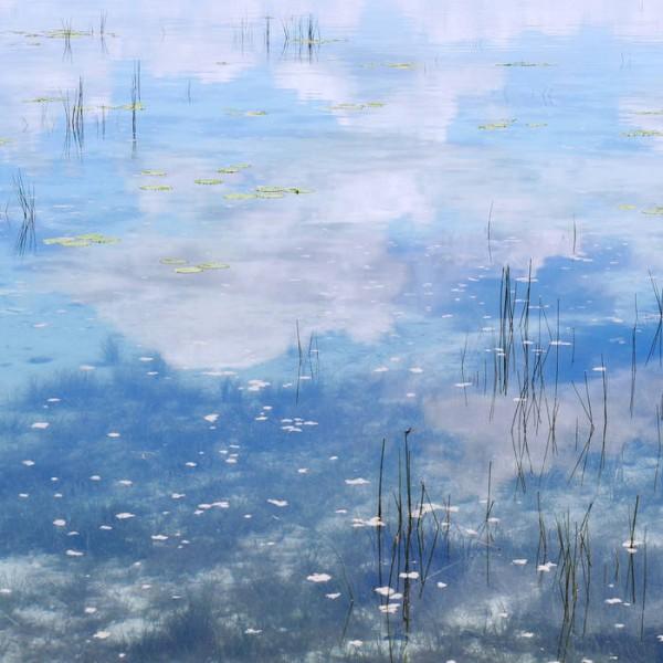 amj-meets-rsd-sky-blue-love-vol-1-cd-astar-artes-recordings-cover
