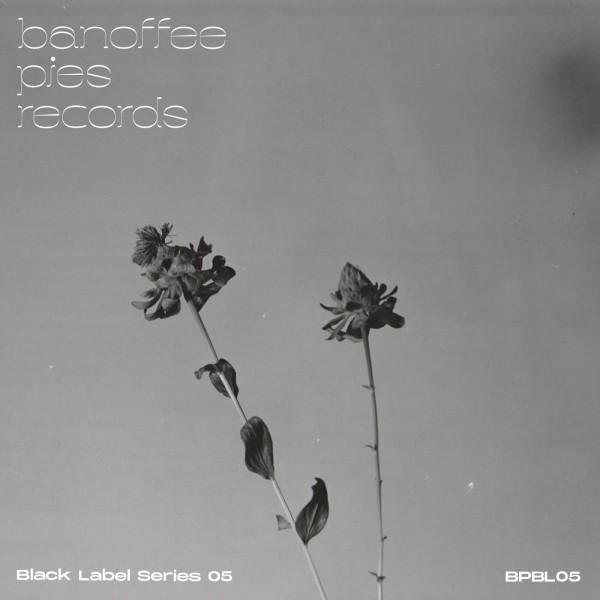 monika-ross-n-gynn-various-artists-black-label-series-05-banoffee-pies-cover