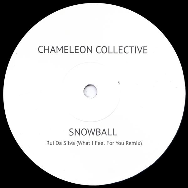 chameleon-collective-snowball-rui-da-silva-remix-not-on-label-cover