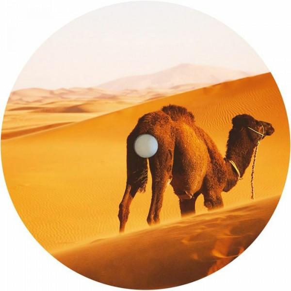 derboukas-camel-bossa-caravan-march-pepite-cover