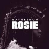 wayne-snow-rosie-ep-tartelet-records-cover