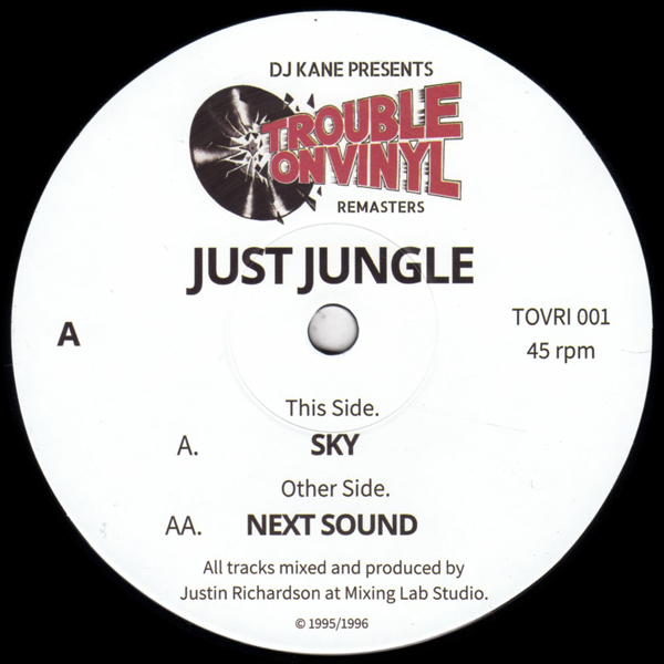 just-jungle-sky-next-sound-trouble-on-vinyl-cover