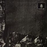 hvl-voiski-vril-zesknel-bas-001-bassiani-cover