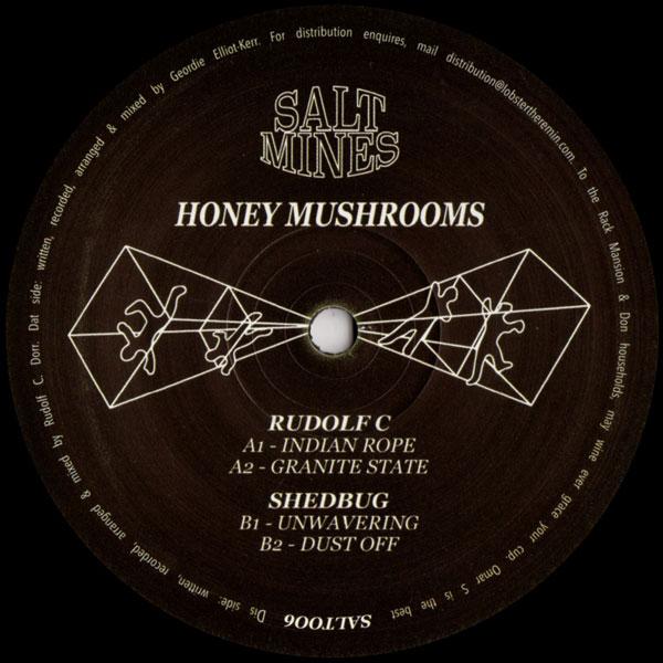 rudolf-c-shedbug-honey-mushrooms-salt-mines-cover