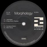 morphology-lagrangian-acidlab-cover
